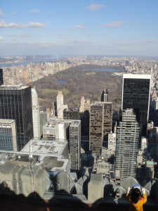Central Park stretches out below Top of the Rock at Rockefeller Center in New York City.